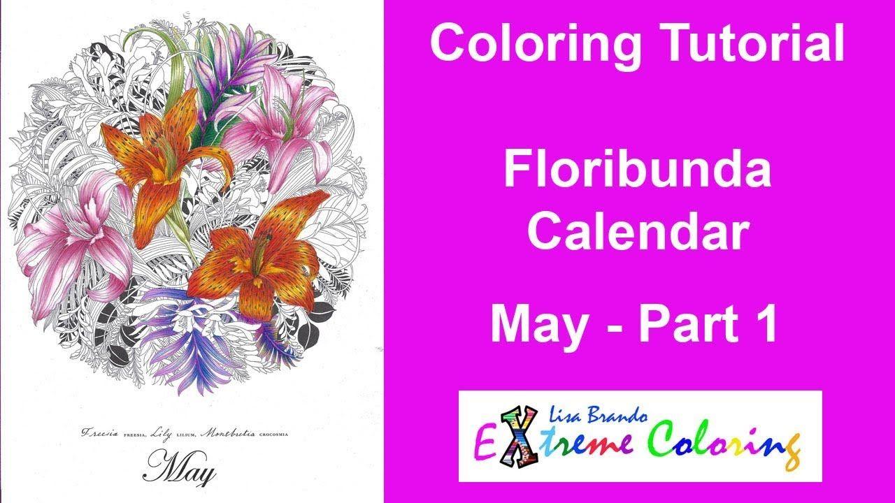 Floribunda May Calendar Coloring Tutorial Lilies Lily