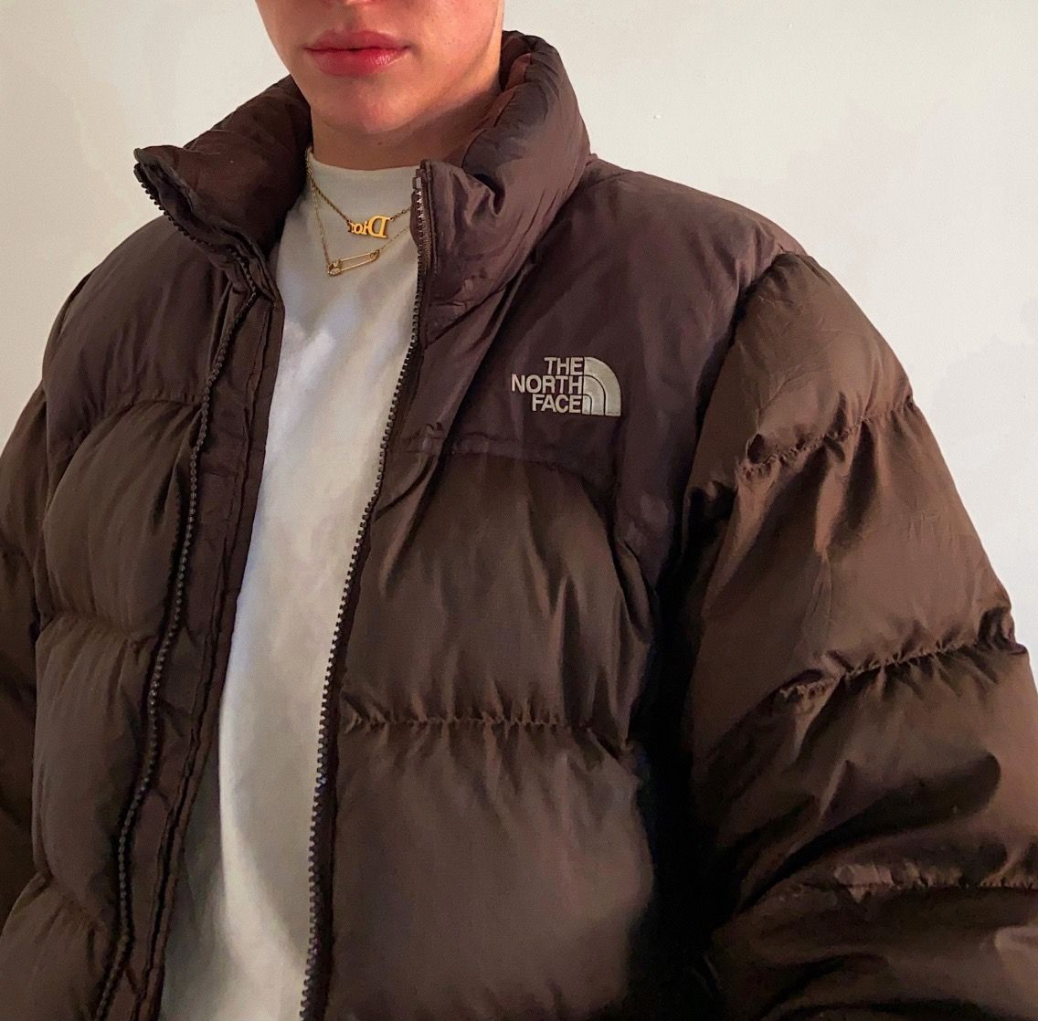 Kendall Jenner Brown Jacket The North Face 700 The North Face Brown Puffer North Face Jacket Outfit Brown North Face Jacket North Face Puffer Jacket [ 1118 x 1136 Pixel ]