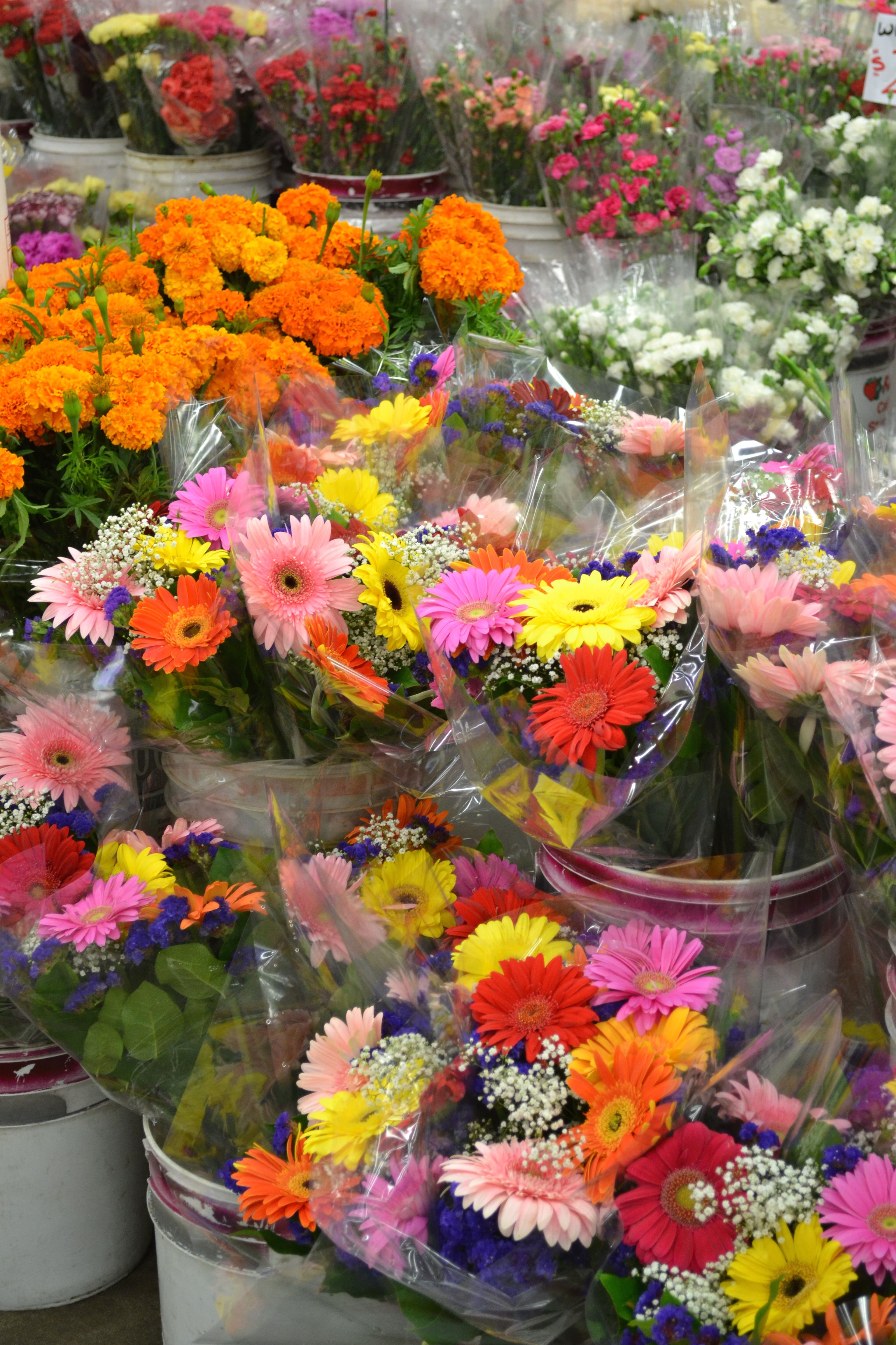 Yellow Pink And Orange Daisies With Baby S Breath Flowers Flower Market Bunch Of Flowers