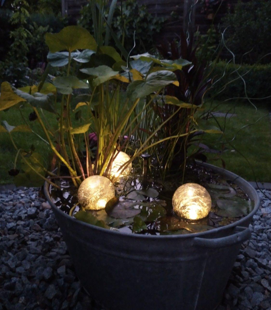 Mini Teich Mit Solarpumpe Und Leuchtkugeln Gekauft Auf Ebay Miniteich Sichtschutz Pflanzen Hortensien Pflege