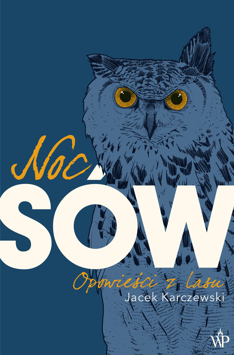 Noc Sow Book Art Bird Owl