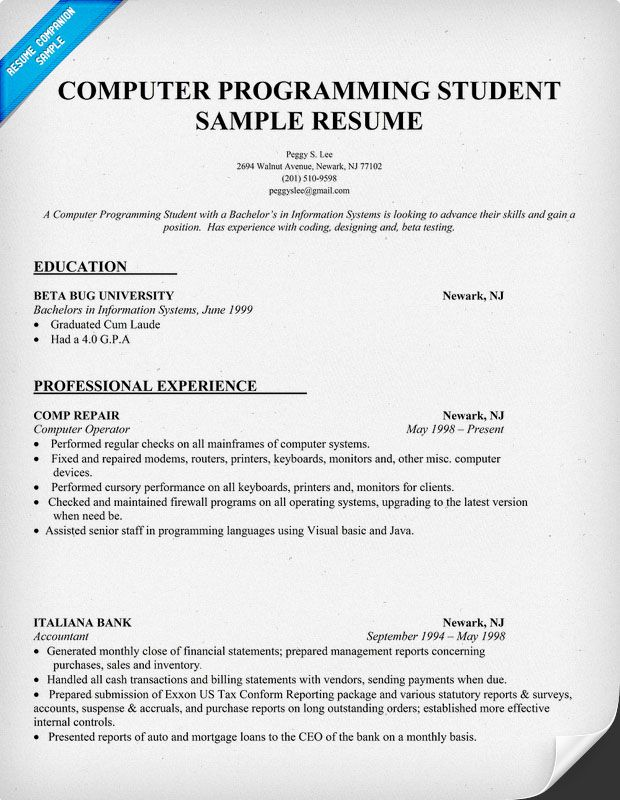 Programmer Resume Example Resume Sample Computer Programming Student Httpresumecompanion .