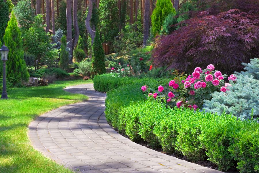 formal english garden design images of home plant types borders