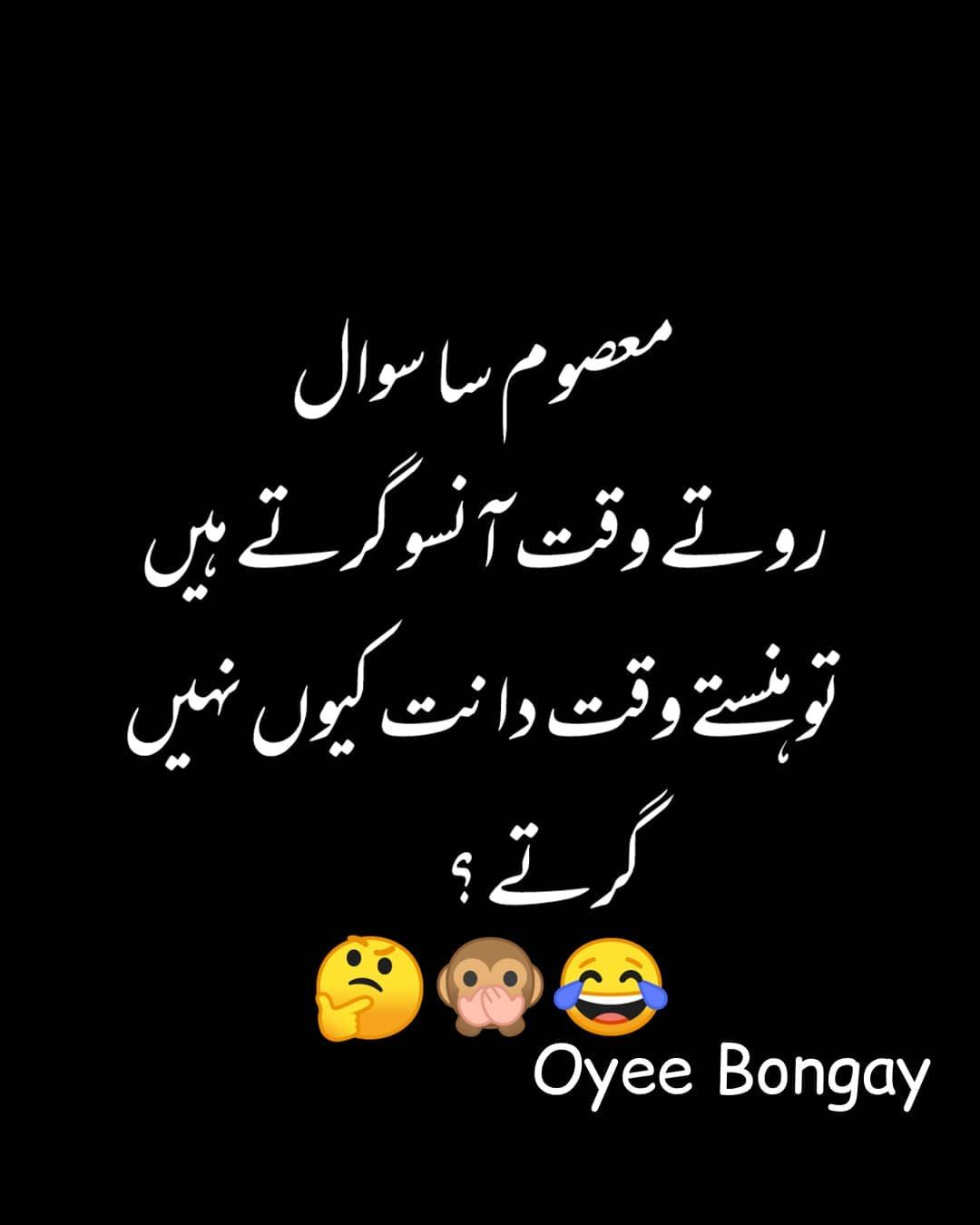 Image May Contain Text Cute Funny Quotes Fun Quotes Funny Urdu Funny Quotes