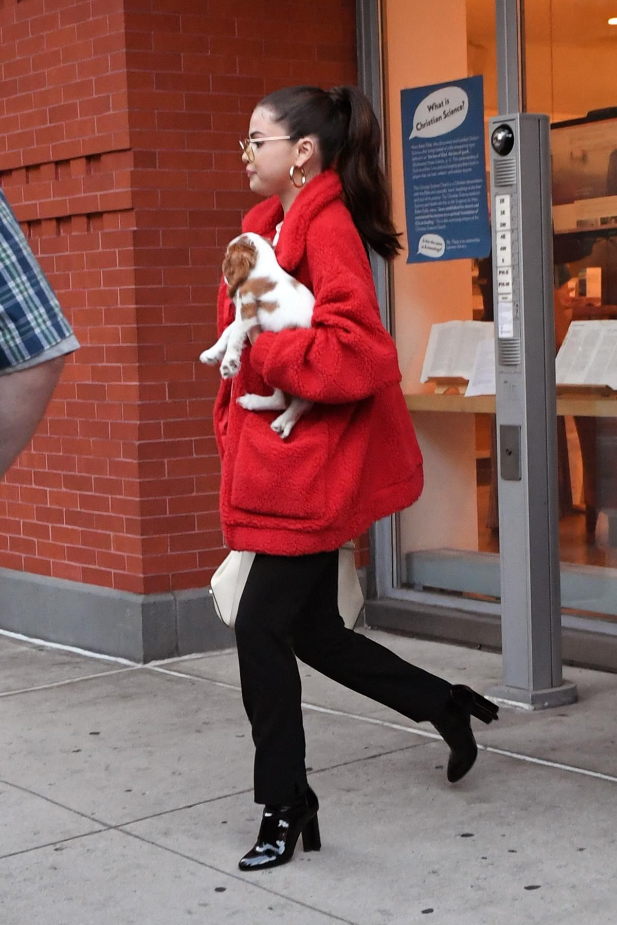 5d4c248ad5ce7 Selena Gomez With Her Cavalier King Charles Puppy Charlie September ...