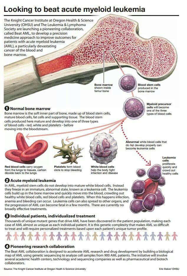 Pin by Tari Glaspie on Cancer | Pinterest | Anatomy