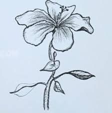 Znalezione Obrazy Dla Zapytania Jak Zaczac Rysowac Olowkiem Art Flower Drawing Drawings