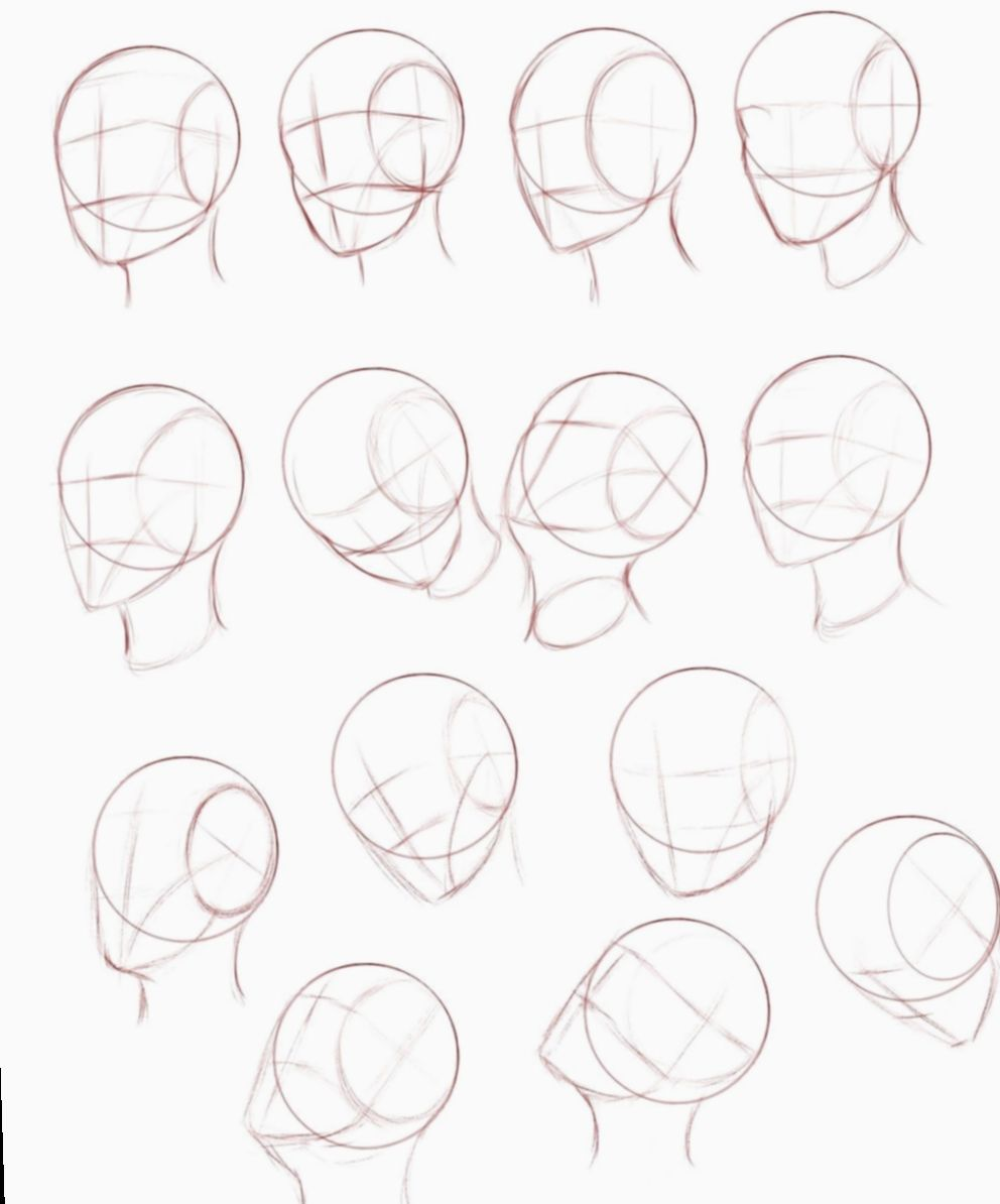 Photo of 19+ Anime Face Proportions Design Reference