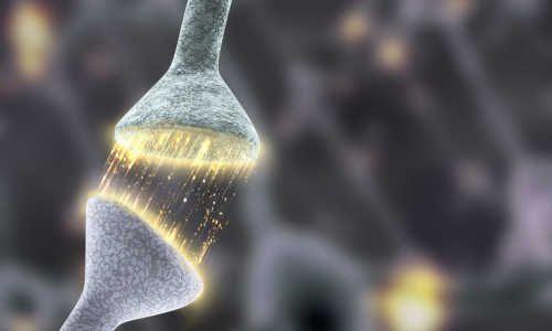 Changing behavior through synaptic engineering - http://bioengineer.org/changing-behavior-synaptic-engineering/