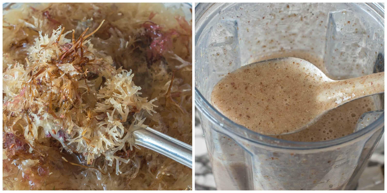 Sea Moss Drink Irish Moss Drink Recipe Irish Moss Recipes Sweet Spice Sea Moss