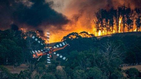 Backburning underway in a bid to curb bushfire crisis in