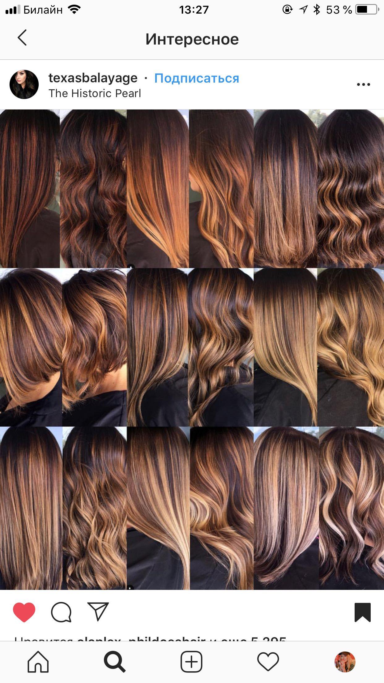 Pin By Diana On Volosy Warm Undertone Hair Color Tone Hair Hair Color Auburn