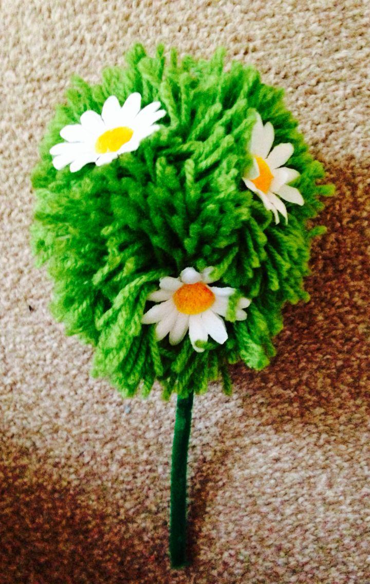 Giant Pom Pom Daisy Bush Pom Daisy Pom Pom Daisy