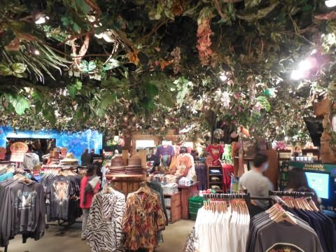 Rainforest Cafe Downtown Disney California Hours