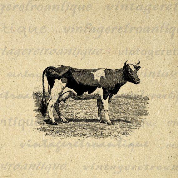 30+ Napoleon Animal Farm Clipart