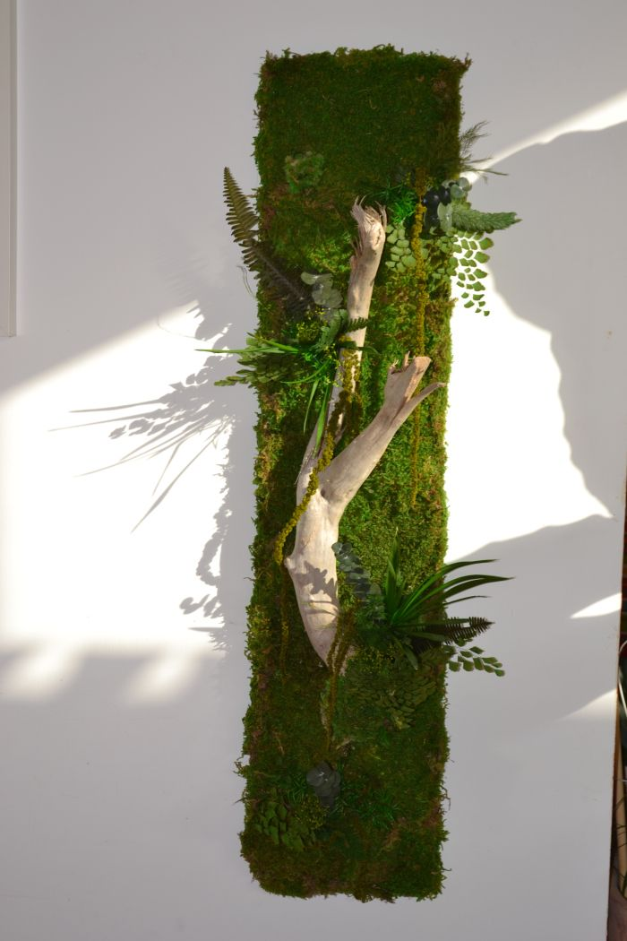 Murs végétaux | Delphine Benoit #ummauertergarten