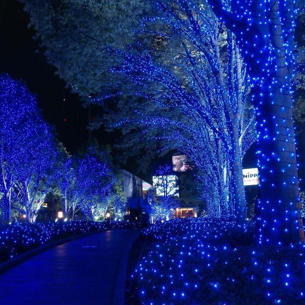 Blue Solar Led Christmas Lights Cinici