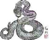 year of the fire snake 1977 snakesfire snake fire snake gemini girl. Black Bedroom Furniture Sets. Home Design Ideas