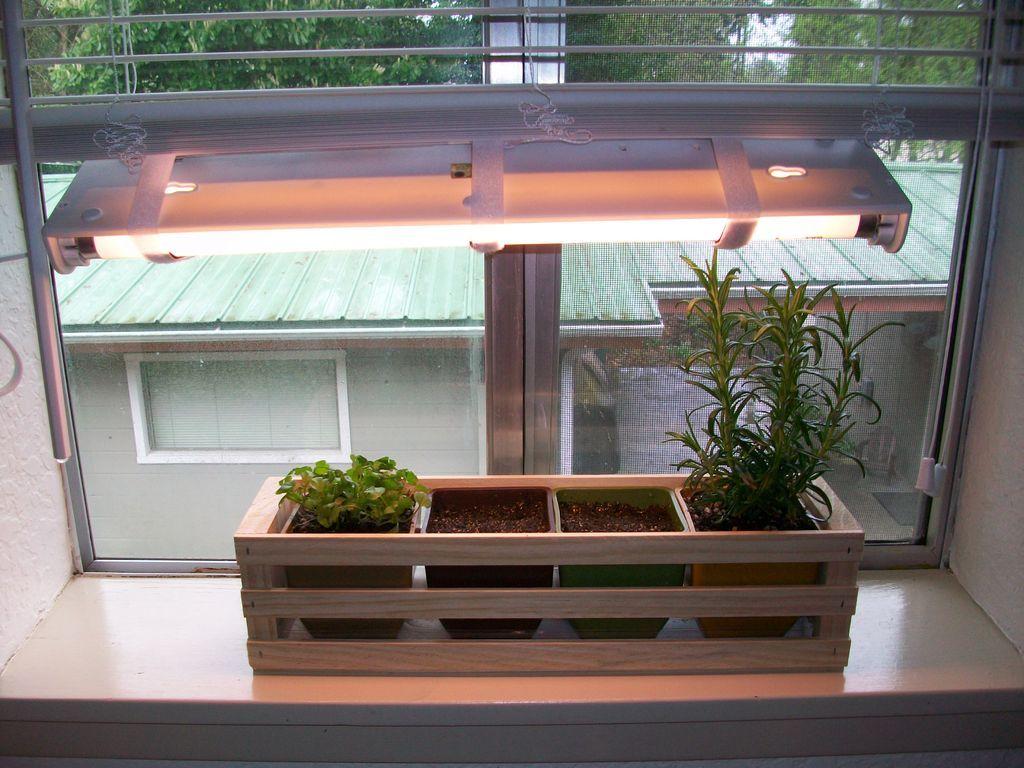 Simple Indoor Herb Garden With Adjule Grow Light