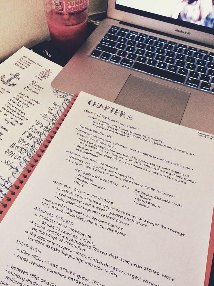 Dissertation paper zaynab