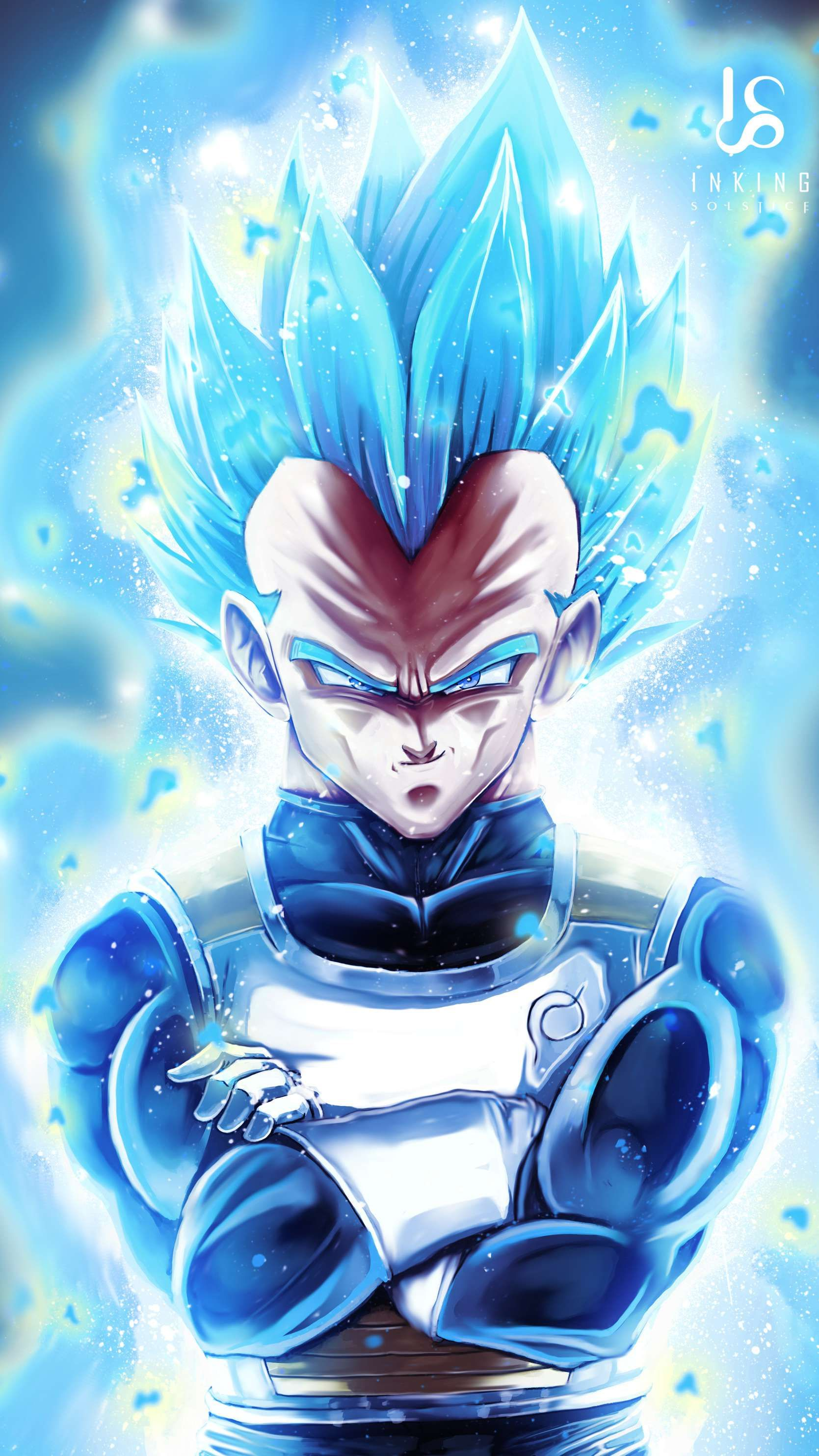 Vegeta Super Saiyan Blue Dragon Ball Z Wallpaper Anime