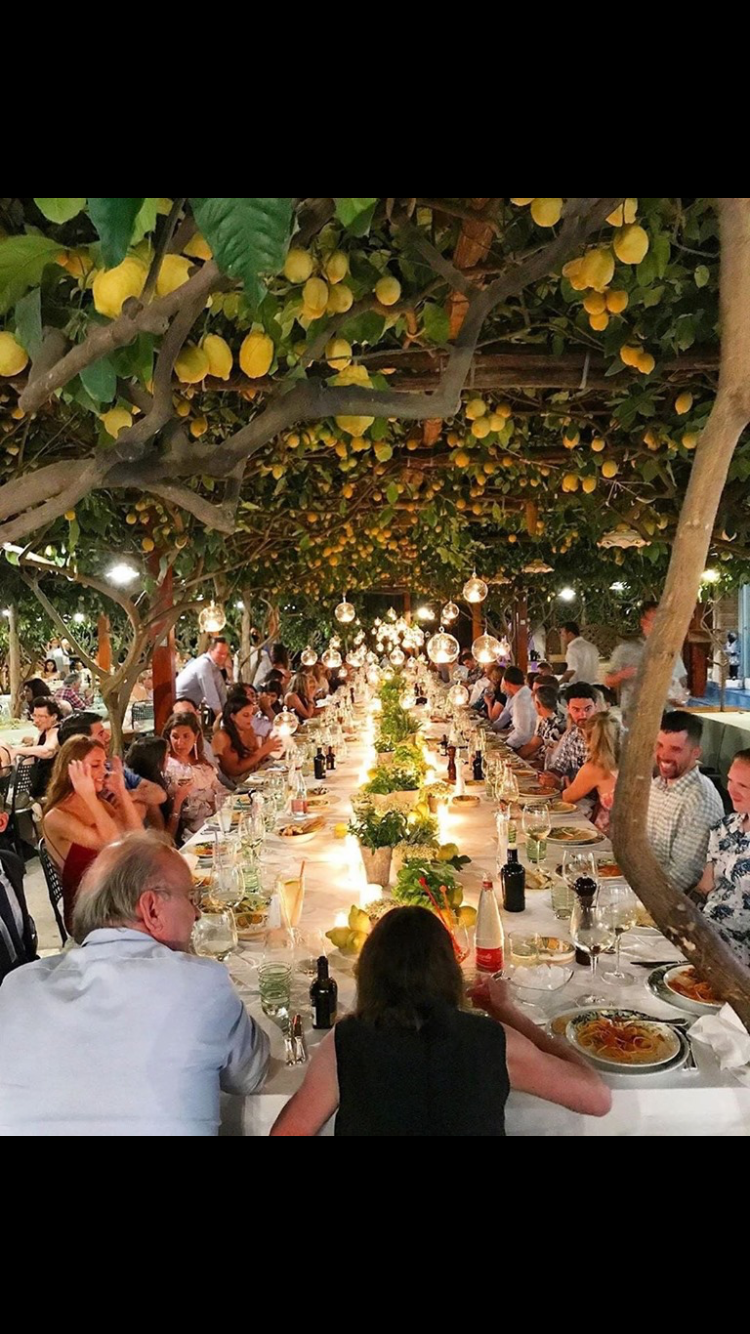 Dining under lemon trees Outdoor restaurant, Tree table