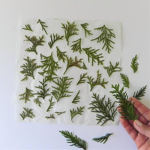 Tree handmade paper, Christmas wrapping paper, green tree paper