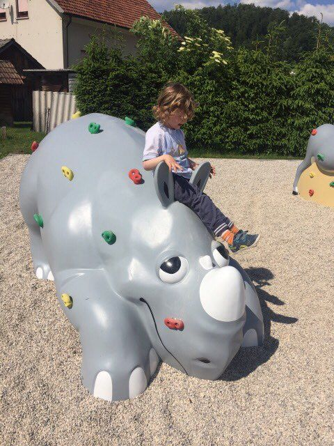 Luke the Rhino - playground climbing equipment | Climbing