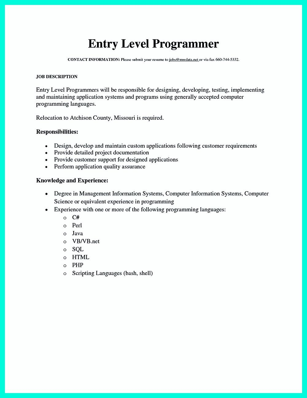 computer programmer resume has some paragraphs that focuses on the computer programmer resume has some paragraphs that focuses on the project management object oriented programming