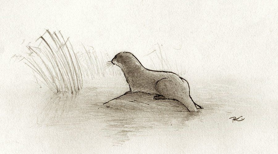 RIP River Otter by RobtheDoodler on DeviantArt | ollie the otter ...