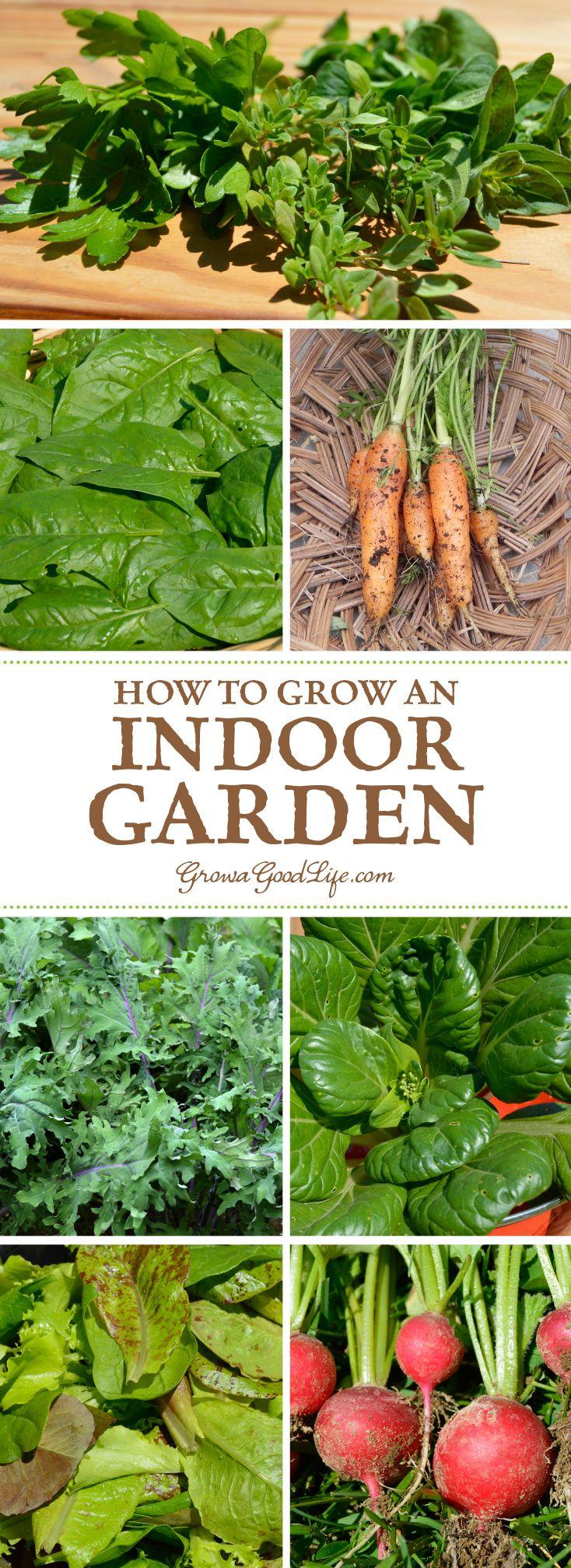How To Grow An Indoor Garden Vegetable Garden Indoor 400 x 300
