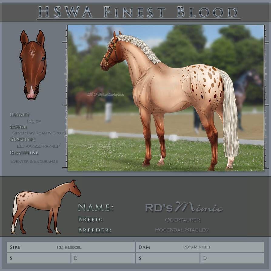 Hswa Finest By Jullelin On Deviantart Horse Drawings Horse Animation Horse Art [ 894 x 894 Pixel ]