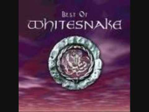 Guilty of Love by Whitesnake