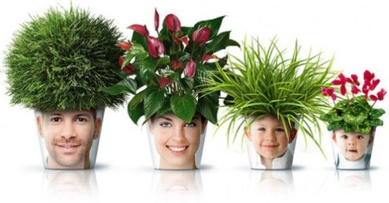 Homemade Chia Pets Super Glue A Face Picture To A Pot Grow Your