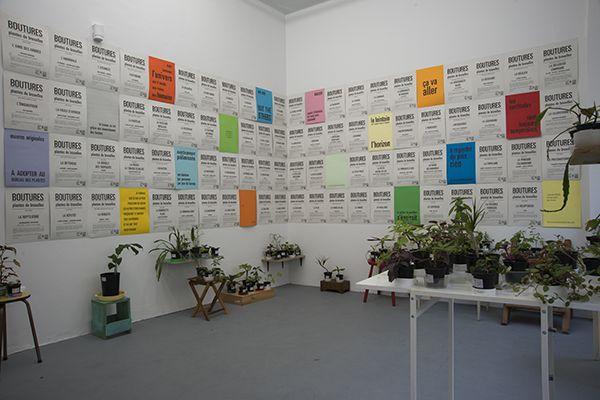 Plantes de Bruxelles, Lise Duclaux, BE
