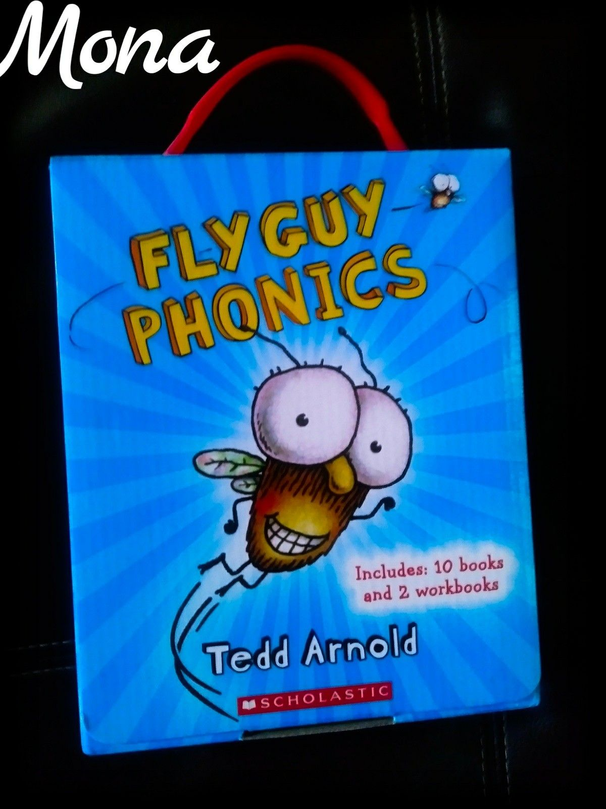 My Daughter S Fly Guy Phonics Reading Short Vowels