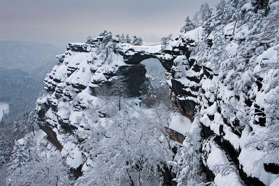 Stefan Junghannß Fotografie Foto Bilder Elbsandsteingebirge... Erinnerung: Prebischtor mit mega Wurzelbaum