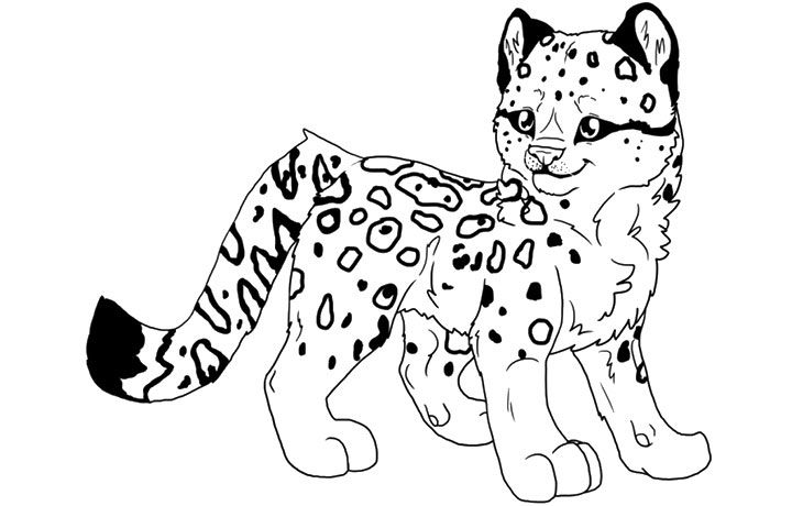 Top 15 Free Printable Lisa Frank Coloring Pages Online Coloring Pages Baby In Snow Snow Leopard Drawing