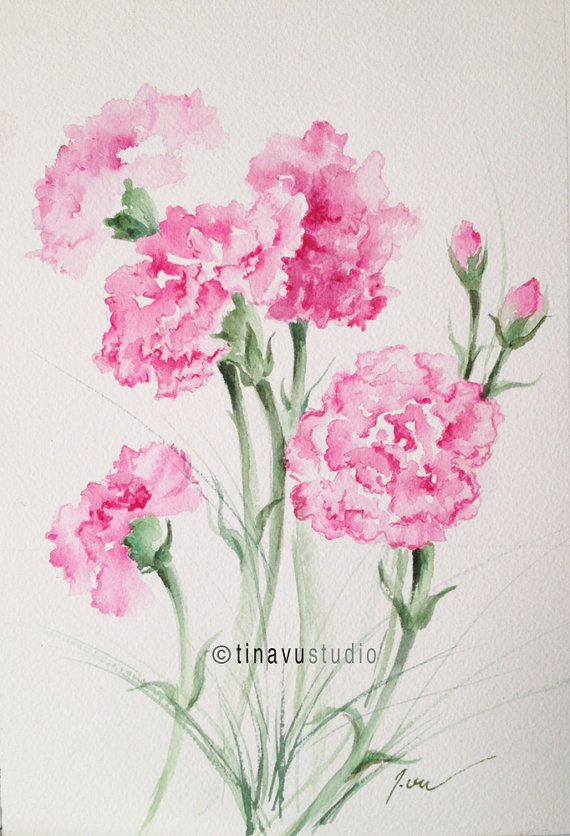 January Birthday Flowers Pink Carnations Original Watercolor