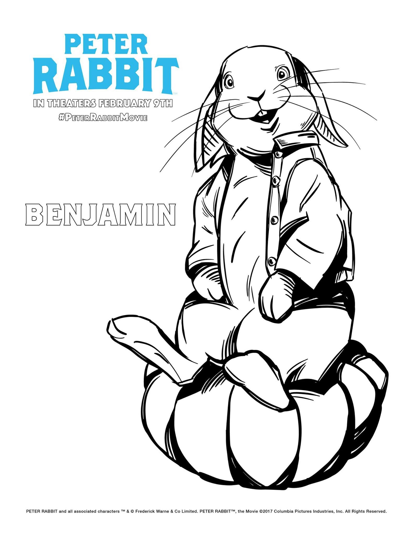 Benjamin Bunny Colouring Peter Rabbit Movie Peter Rabbit Coloring Pages