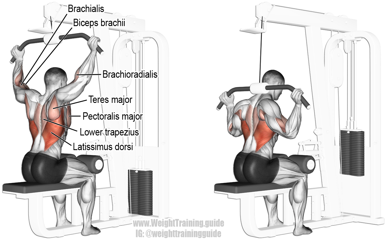 Behind The Neck Lat Pull Down Guide And Video