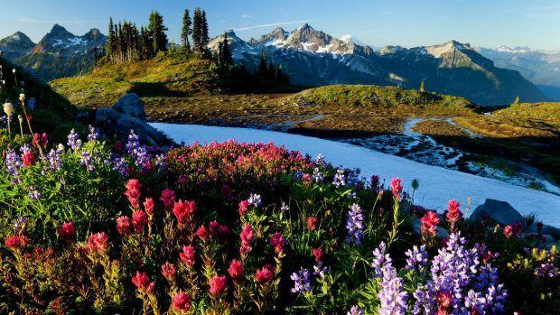 Spring Mountains Desktop Wallpaper Wallpaper Hd Download