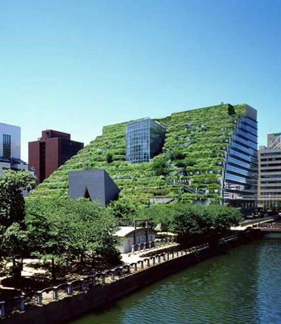 Architecture: The 100,000 square foot side of the ACROS Fukuoka building is definitely one of a kind. The 18 story building features 15 stepped terraces that can actually be climbed to the top.