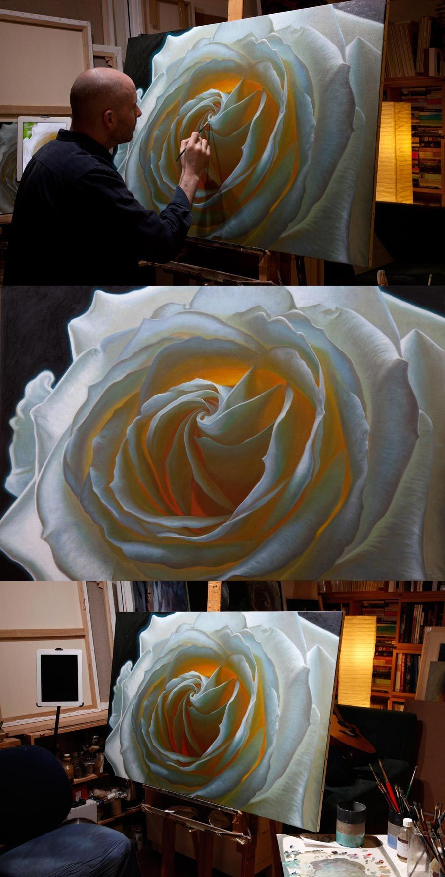 Oil painting of a white rose by artist vincent keeling