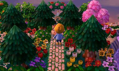 A Forest Life Amy S Animal Crossing Blog Inching Through Time