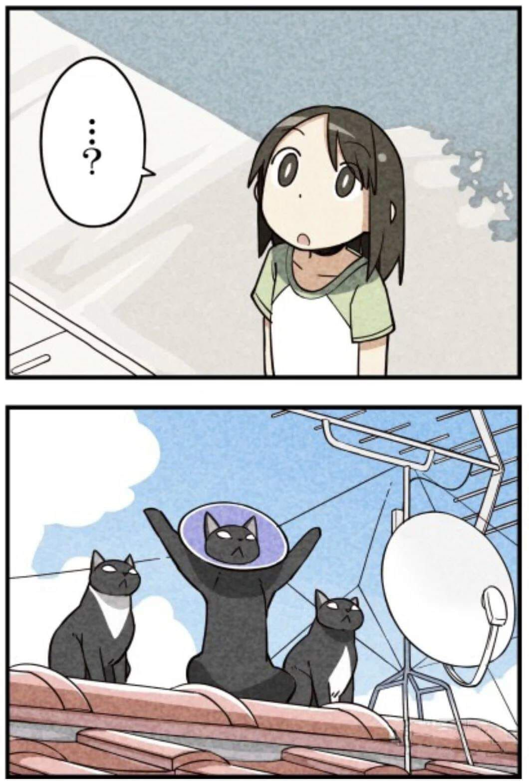 Pin by えリか on Animu Funny baby images, Anime funny