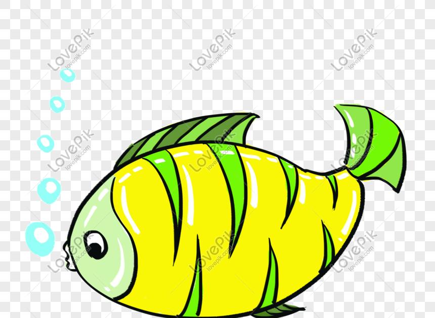 Paling Keren 30 Koleksi Gambar Kartun Ikan Kartun Ikan Laut Bahan Png Gratis Gambar Unduh Gratis Download Kartun Ikan Animasi Gambar Kartun Gambar Kartun