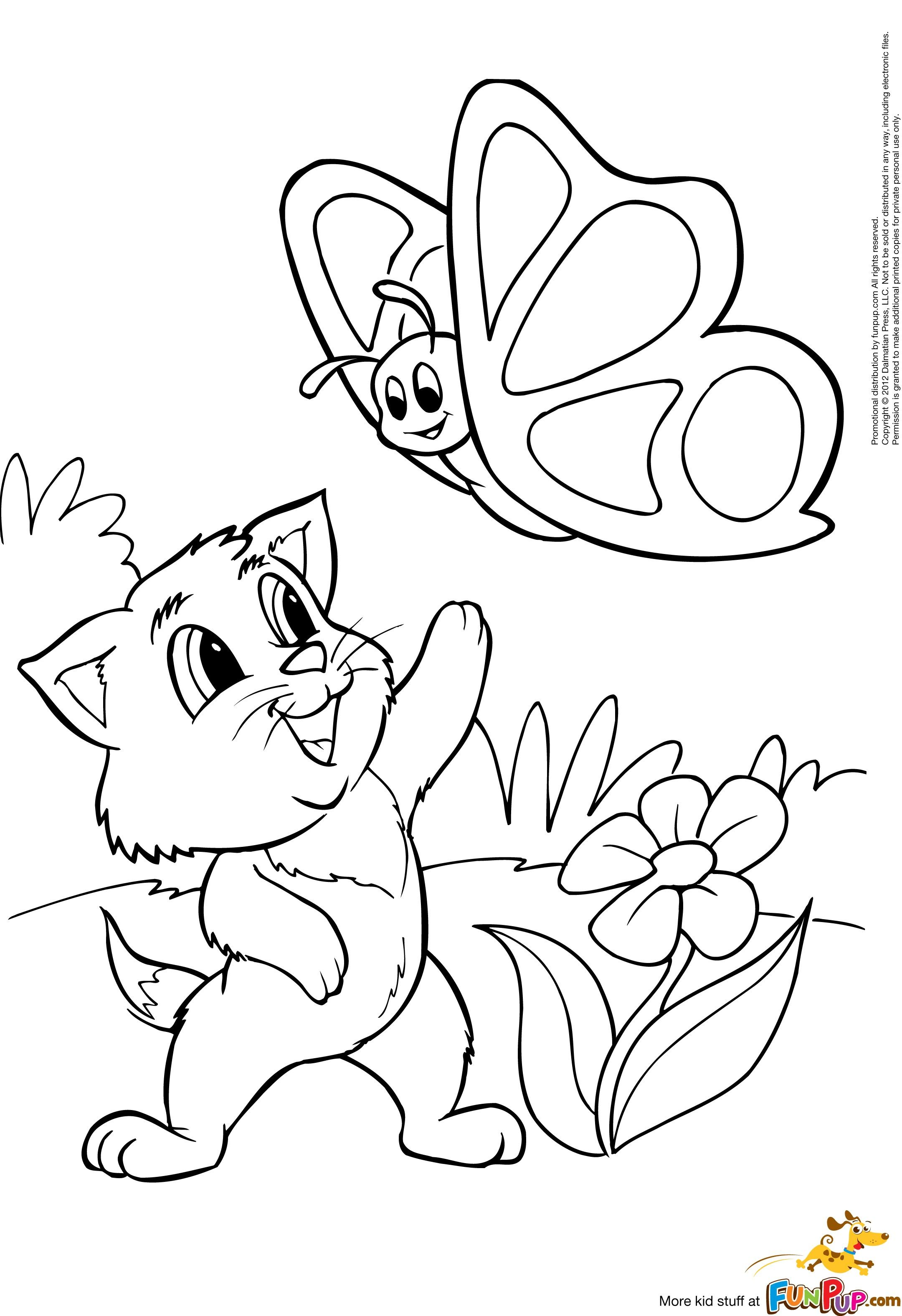 Kitty And Butterfly 0 00