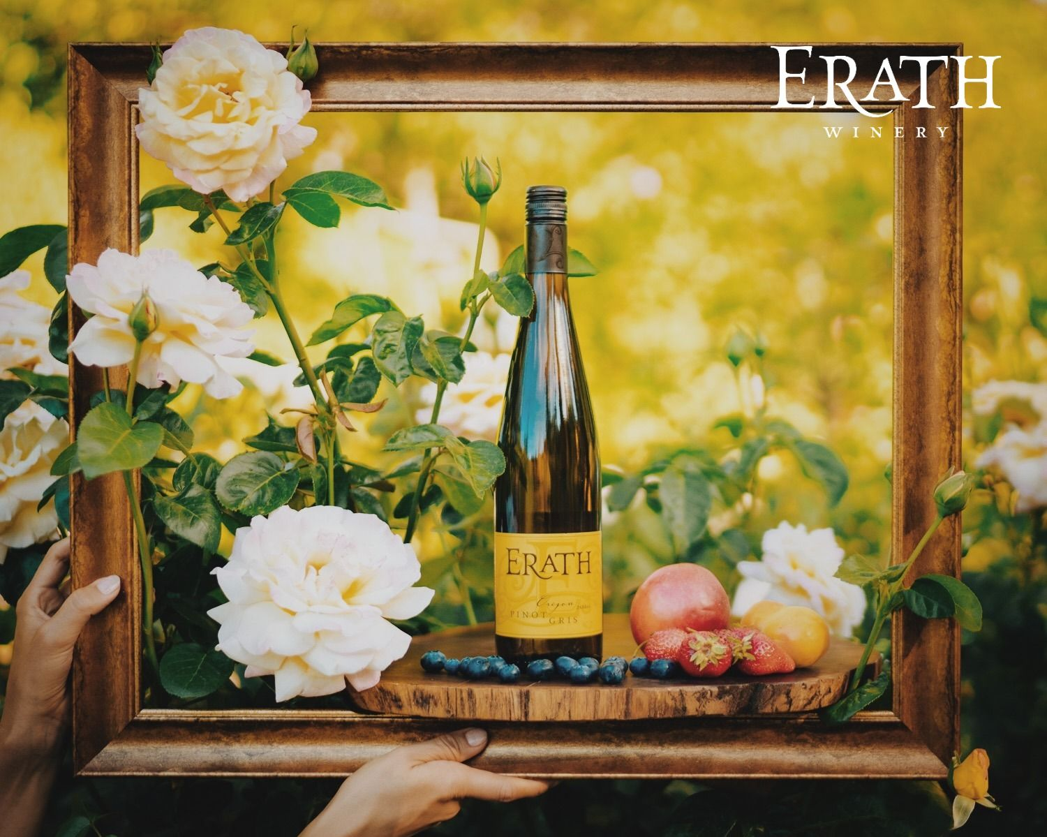 Discover oregon pinot gris in 2020 oregon pinot pinot