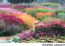 Google Image Result for http://2.bp.blogspot.com/__91Zqow3RhU/ScGk8K-mirI/AAAAAAAAATc/wg4bJ9FGJWM/s320/gardening-graphics_1048641a.jpg